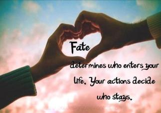 Fate-Quotes